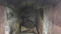 Сушильный комплекс СБ-1,5 - Изображение #2, Объявление #1645497